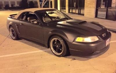 480_Mustang
